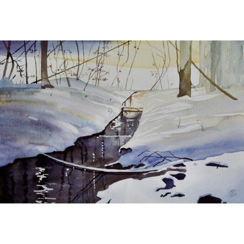 Quelle im Winter