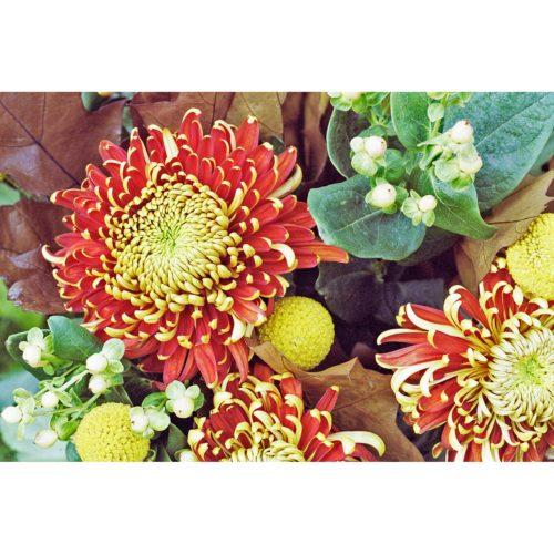 Herbststrauß mit Chrysanthemen