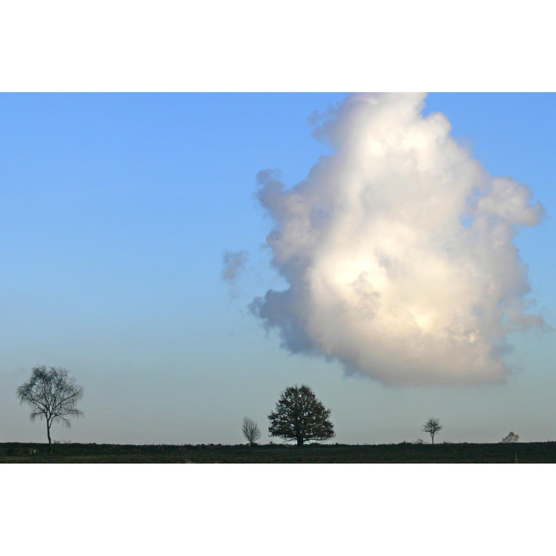 Wolke mit Bäumen