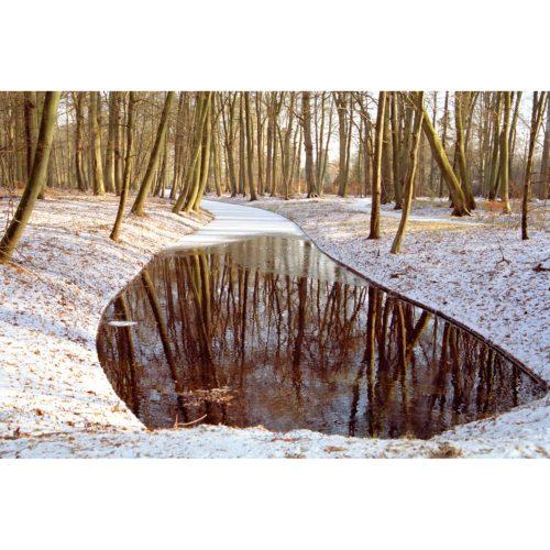 Wasser Spiegelung