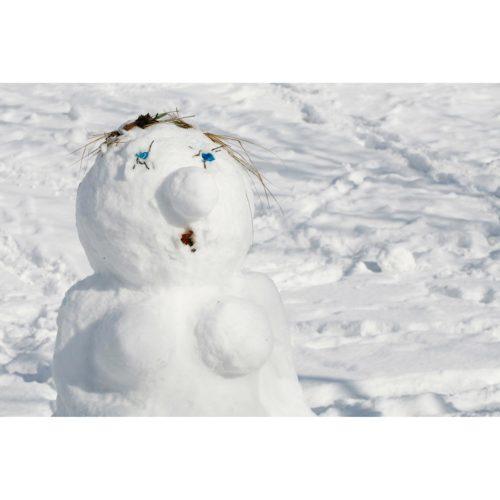 Schneedame