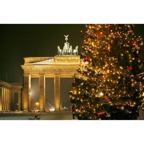 Tannenbaum am Brandenburger Tor