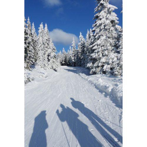 Winterlandschaft mit Schatten